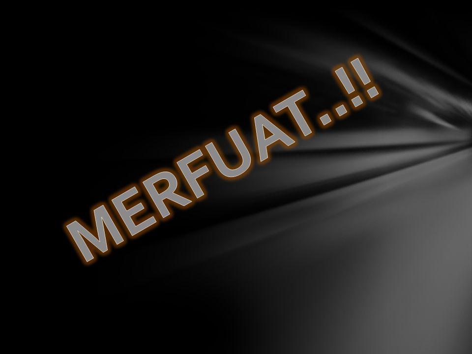 MERFUAT..!!