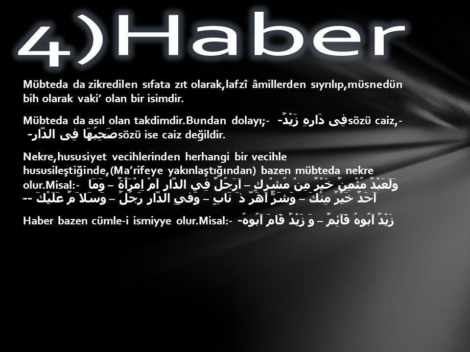 4)Haber