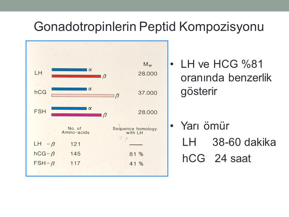 Gonadotropinlerin Peptid Kompozisyonu