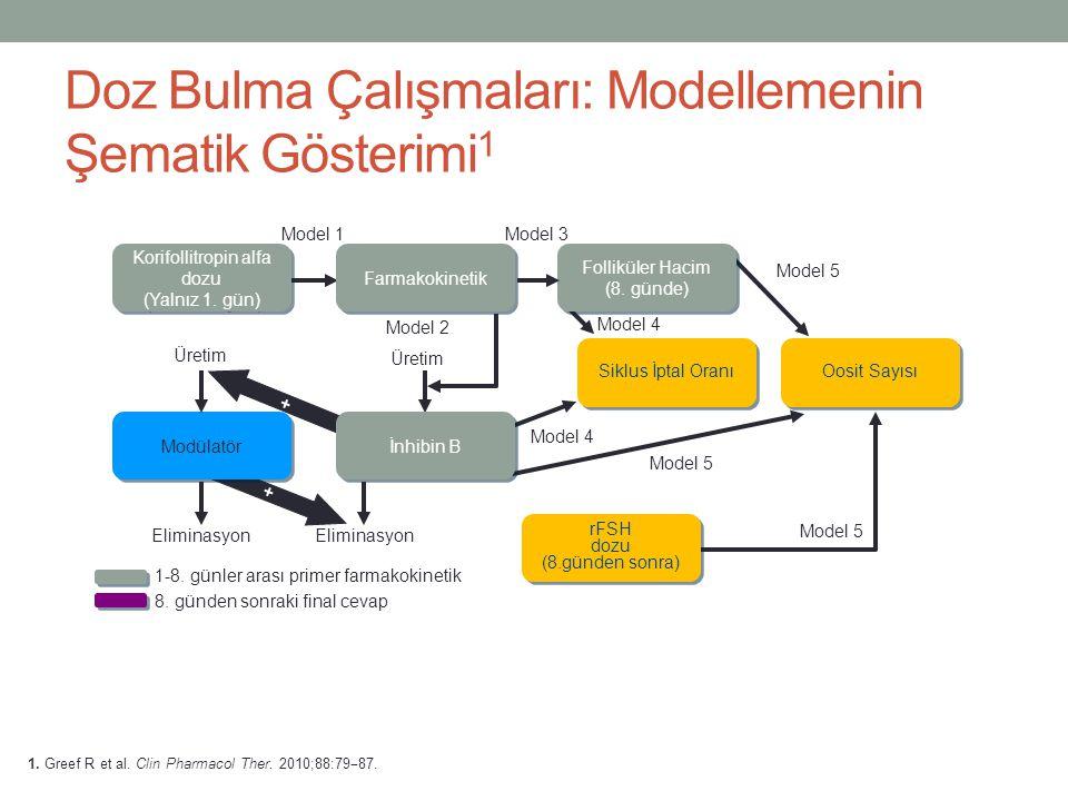 Doz Bulma Çalışmaları: Modellemenin Şematik Gösterimi1