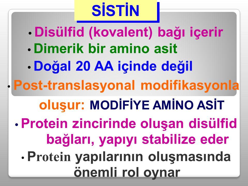 oluşur: MODİFİYE AMİNO ASİT • Protein zincirinde oluşan disülfid