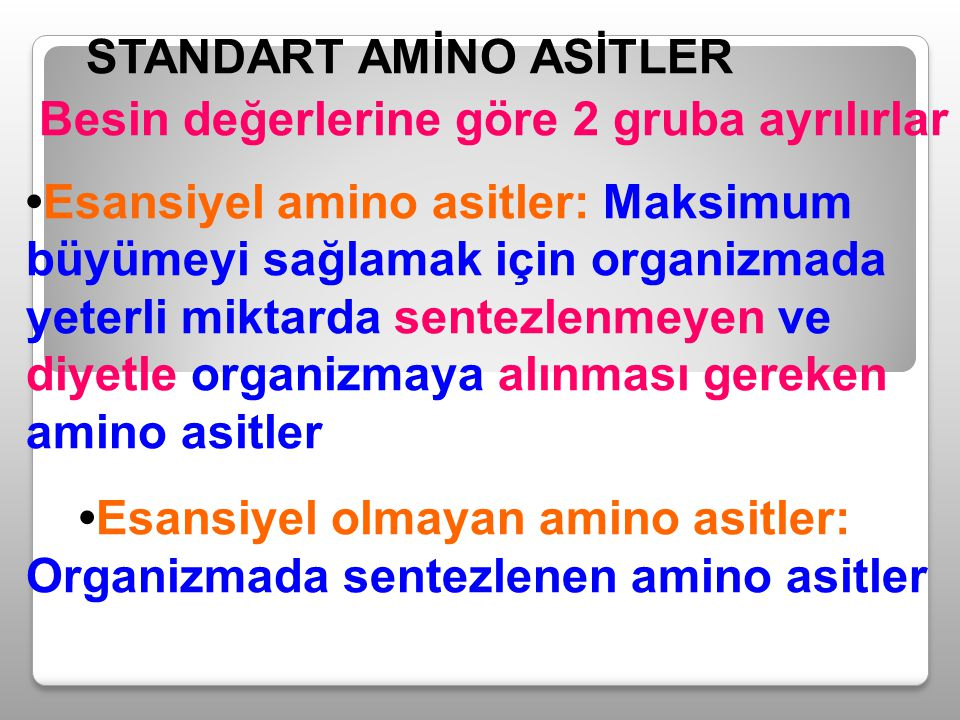 STANDART AMİNO ASİTLER