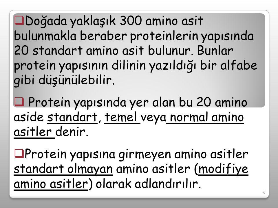 Doğada yaklaşık 300 amino asit bulunmakla beraber proteinlerin yapısında 20 standart amino asit bulunur. Bunlar protein yapısının dilinin yazıldığı bir alfabe gibi düşünülebilir.