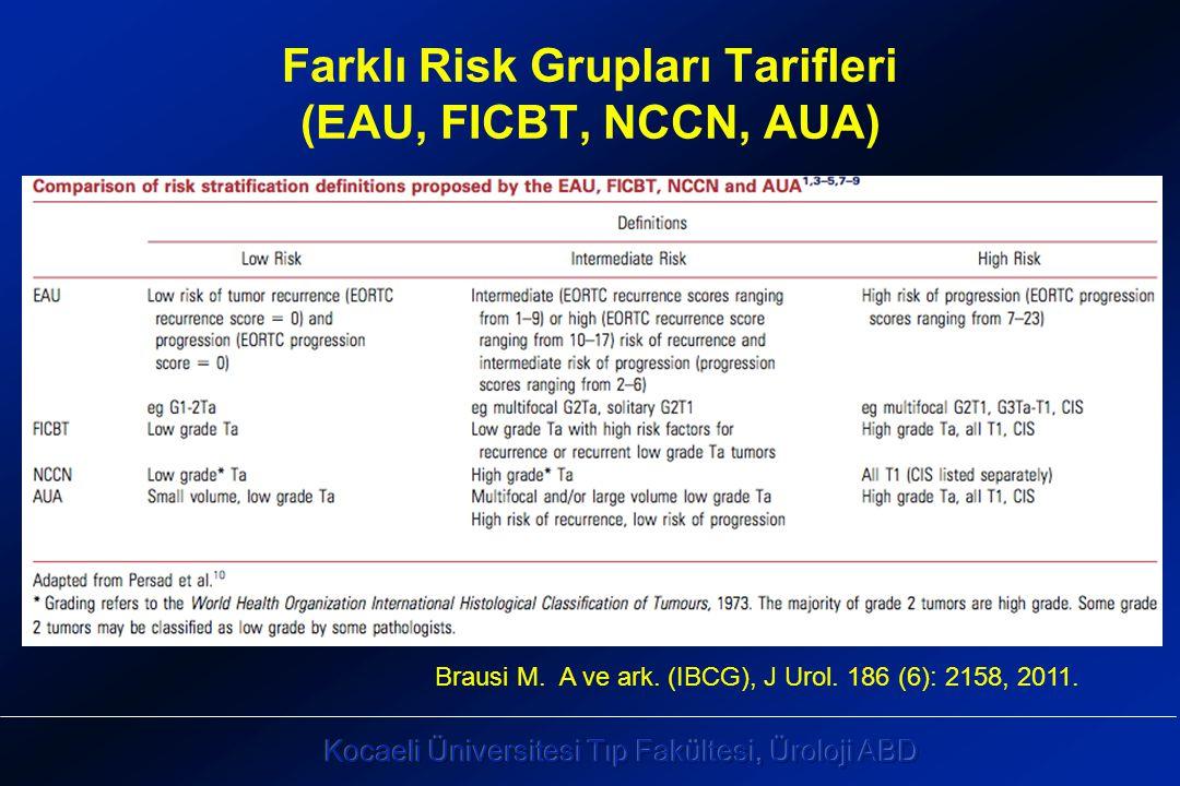 Farklı Risk Grupları Tarifleri (EAU, FICBT, NCCN, AUA)