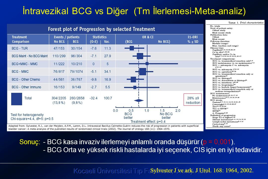 İntravezikal BCG vs Diğer (Tm İlerlemesi-Meta-analiz)