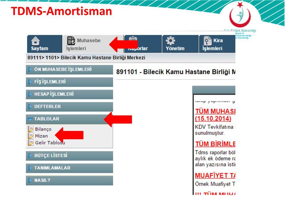 TDMS-Amortisman