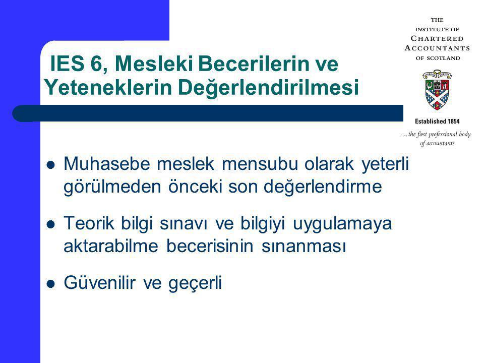 IES 6, Mesleki Becerilerin ve Yeteneklerin Değerlendirilmesi