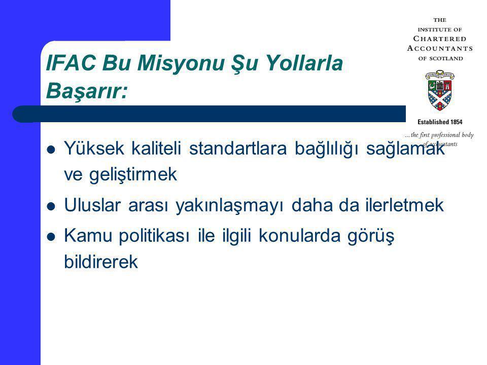IFAC Bu Misyonu Şu Yollarla Başarır: