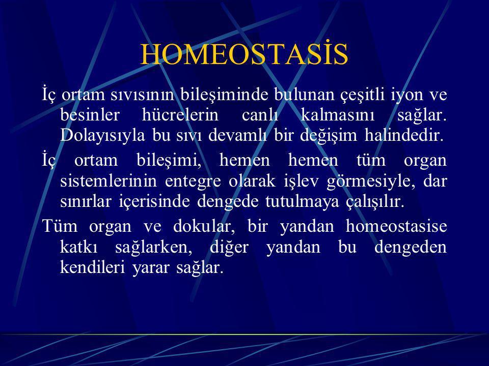 HOMEOSTASİS