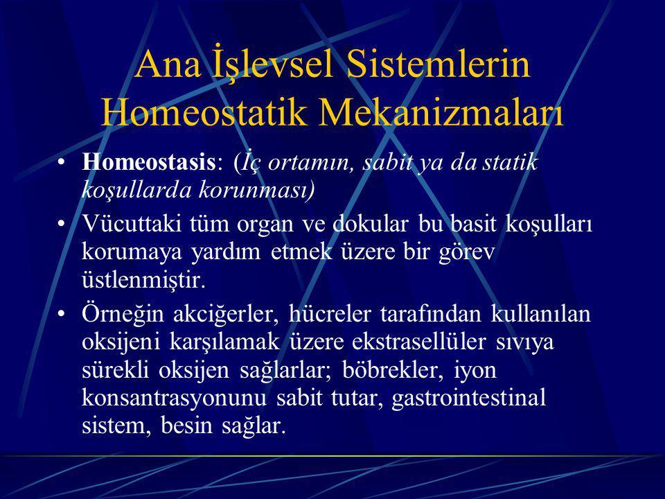 Ana İşlevsel Sistemlerin Homeostatik Mekanizmaları