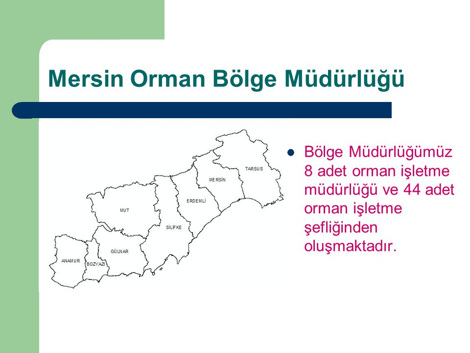 Mersin Orman Bölge Müdürlüğü