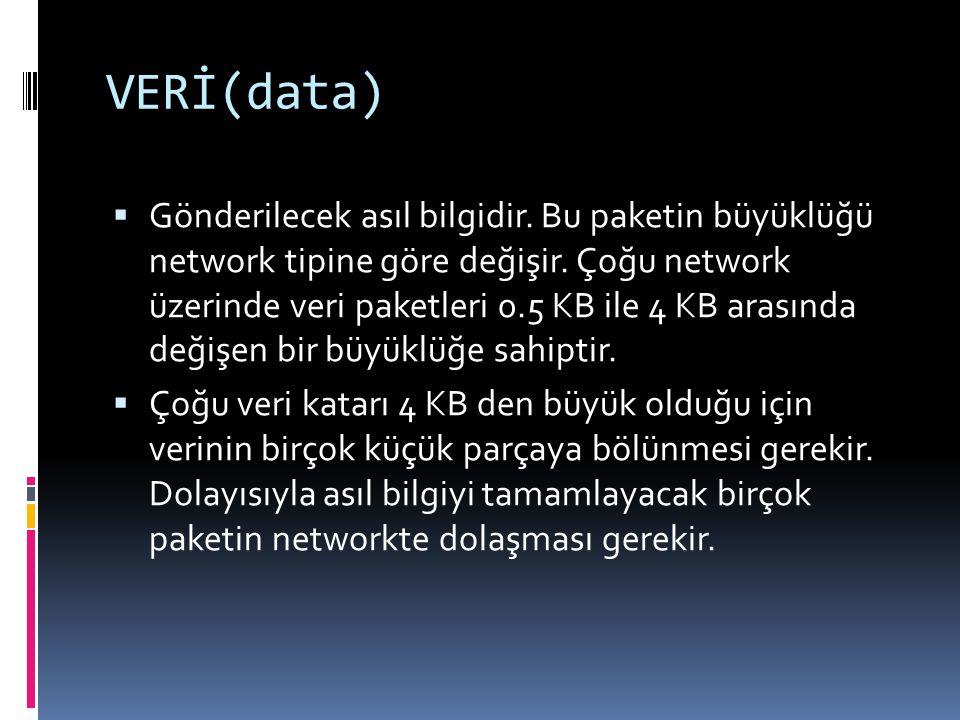 VERİ(data)