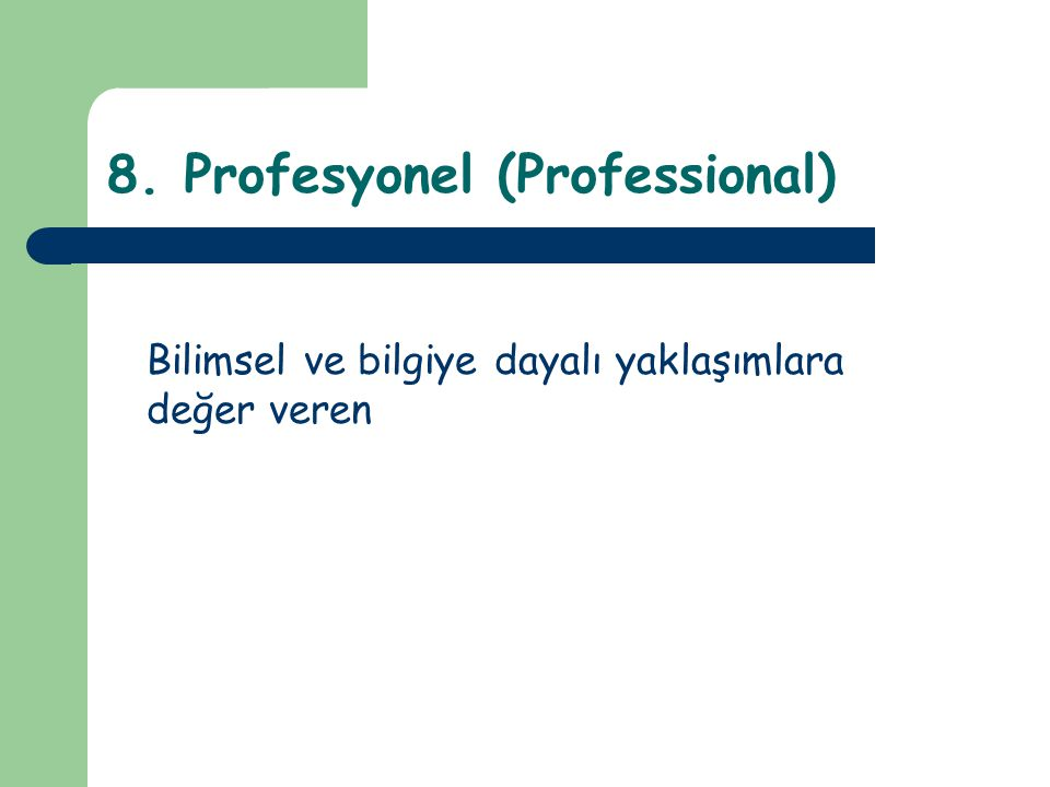 8. Profesyonel (Professional)