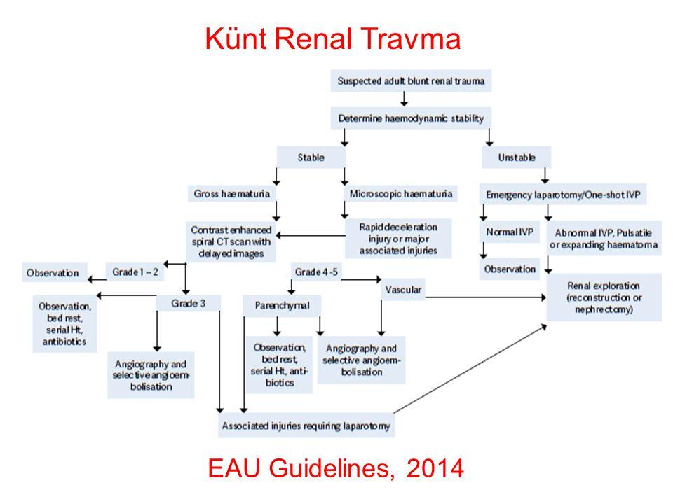 Künt Renal Travma EAU Guidelines, 2014