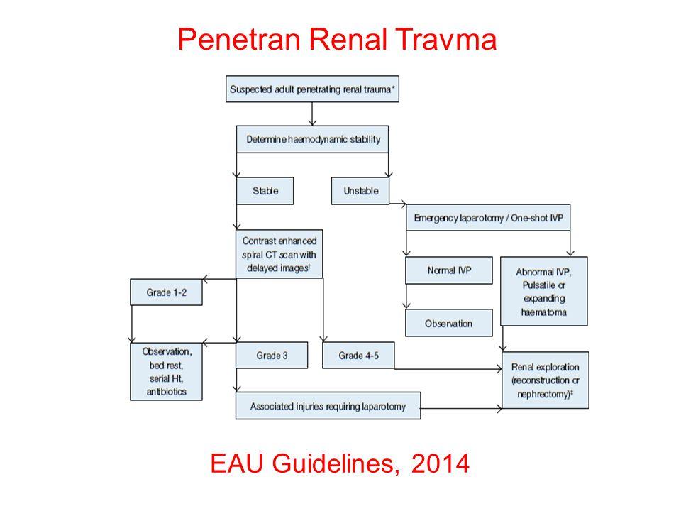 Penetran Renal Travma EAU Guidelines, 2014