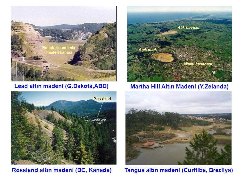 Lead altın madeni (G.Dakota,ABD) Martha Hill Altın Madeni (Y.Zelanda)