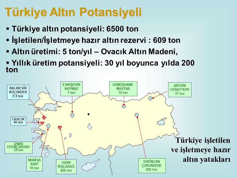 Türkiye Altın Potansiyeli