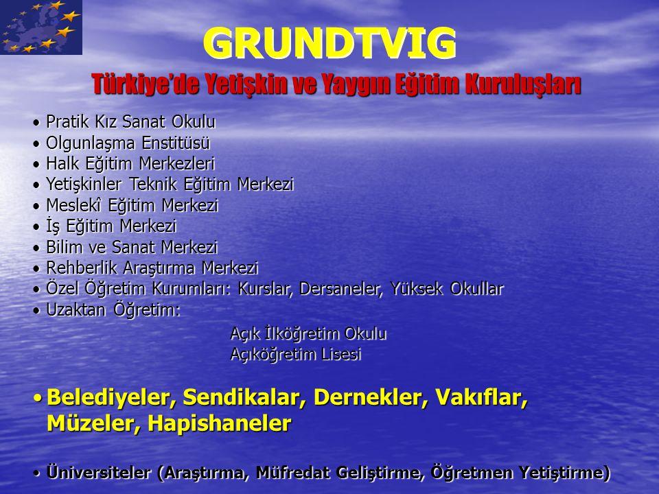 Türkiye'de Yetişkin ve Yaygın Eğitim Kuruluşları