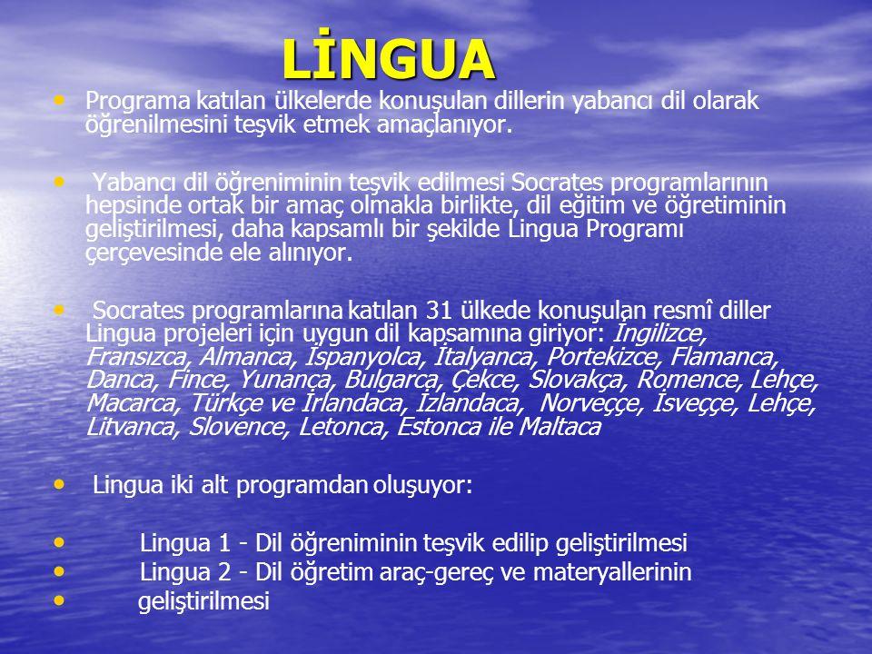 LİNGUA Programa katılan ülkelerde konuşulan dillerin yabancı dil olarak öğrenilmesini teşvik etmek amaçlanıyor.