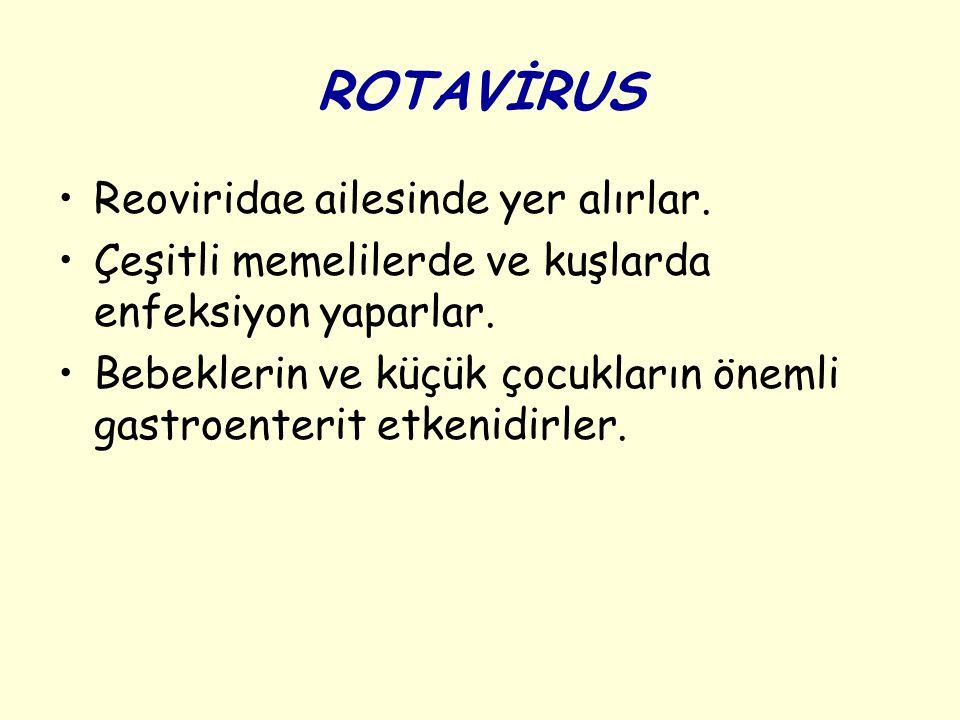 ROTAVİRUS Reoviridae ailesinde yer alırlar.