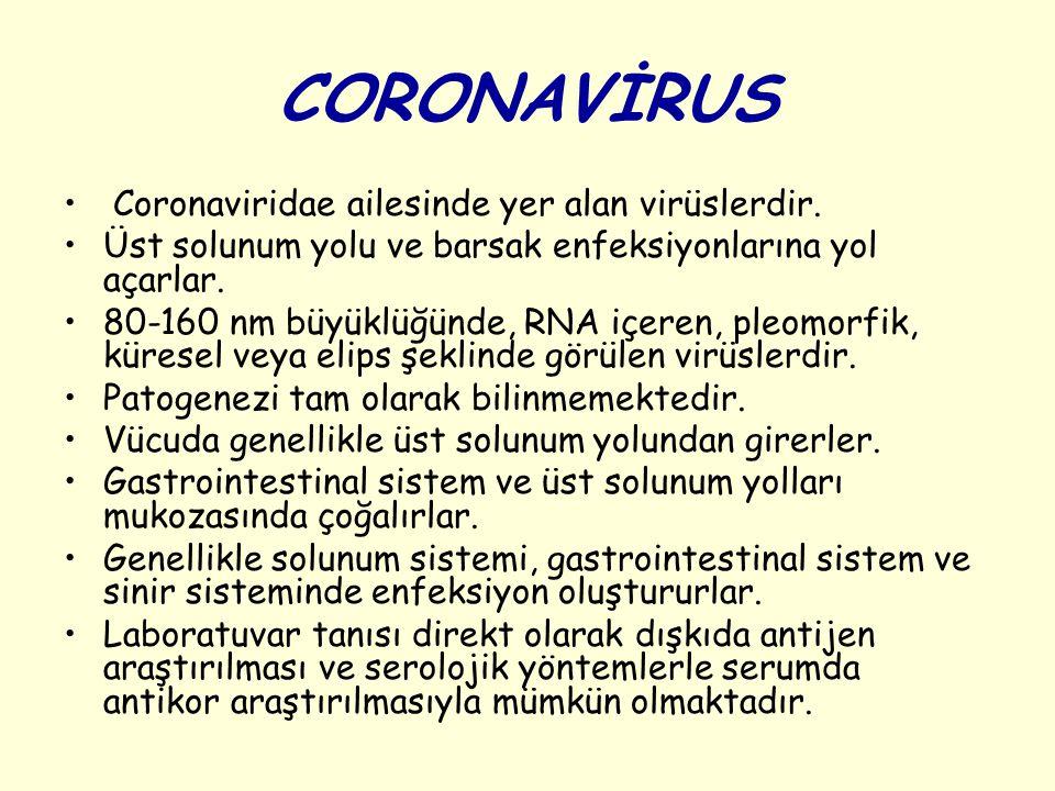 CORONAVİRUS Coronaviridae ailesinde yer alan virüslerdir.