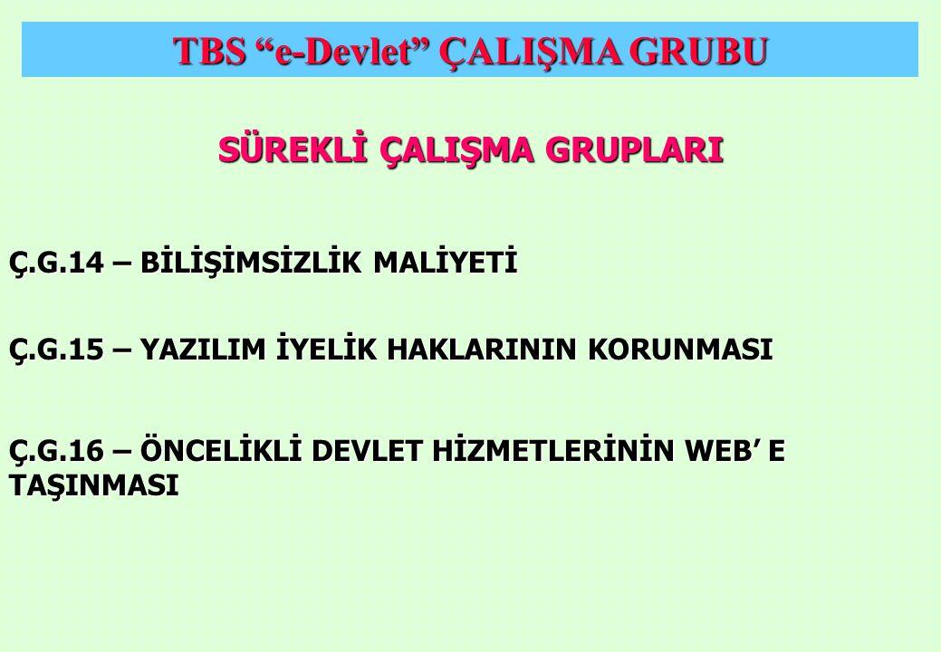 TBS e-Devlet ÇALIŞMA GRUBU SÜREKLİ ÇALIŞMA GRUPLARI