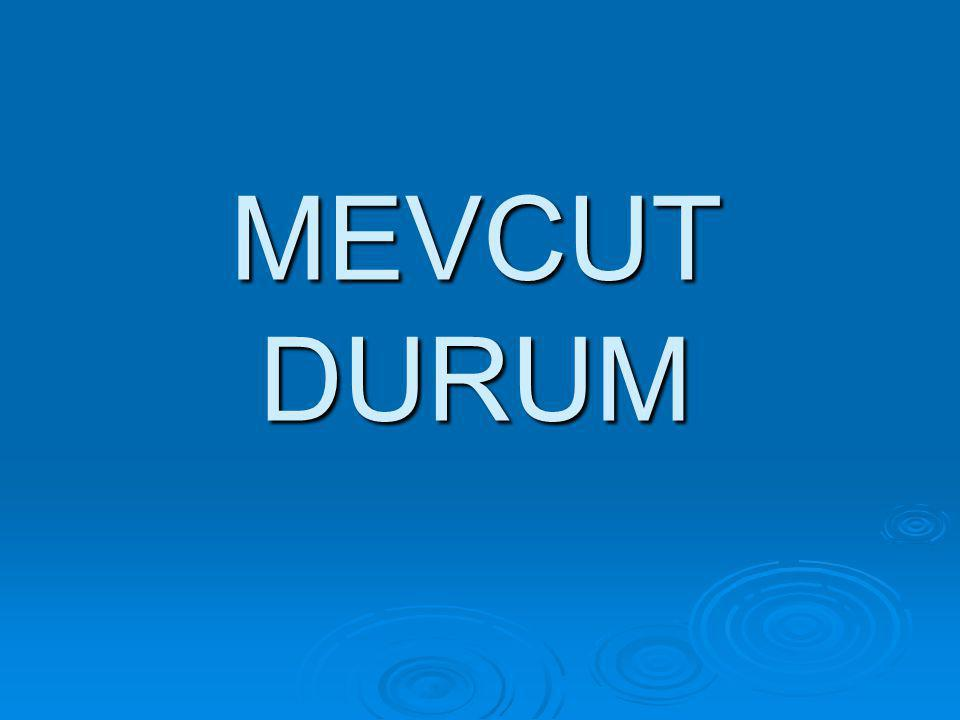 MEVCUT DURUM