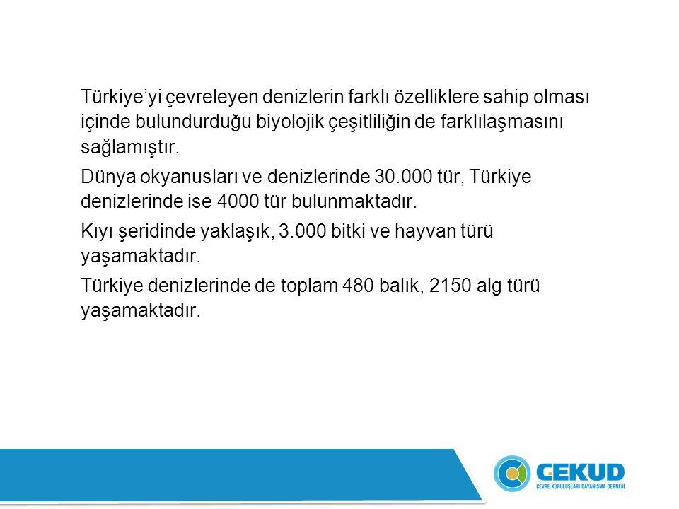 Türkiye'yi çevreleyen denizlerin farklı özelliklere sahip olması içinde bulundurduğu biyolojik çeşitliliğin de farklılaşmasını sağlamıştır.