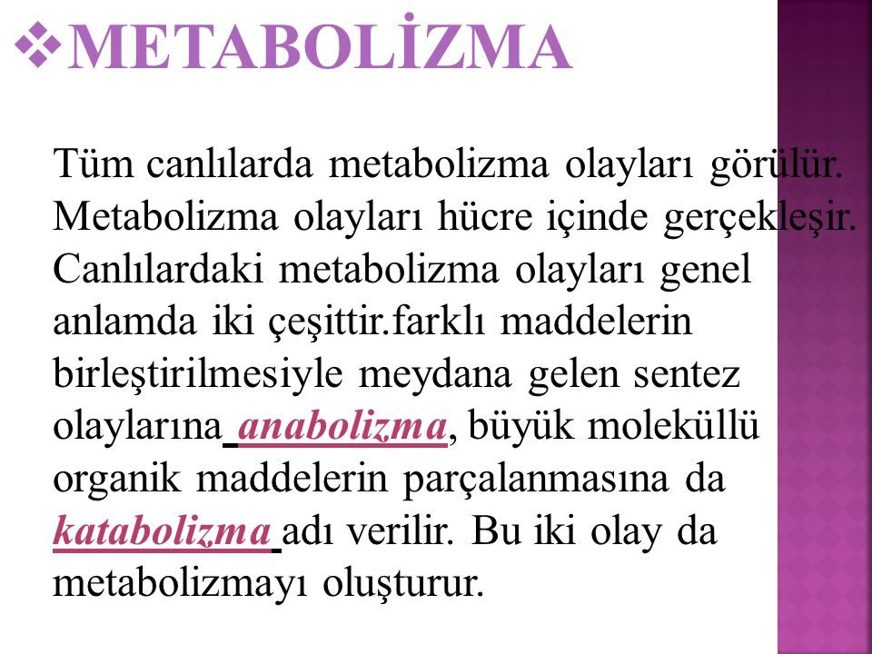 METABOLİZMA