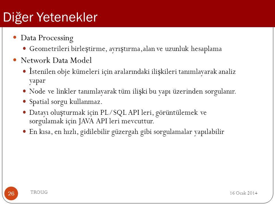 Diğer Yetenekler Data Processing Network Data Model