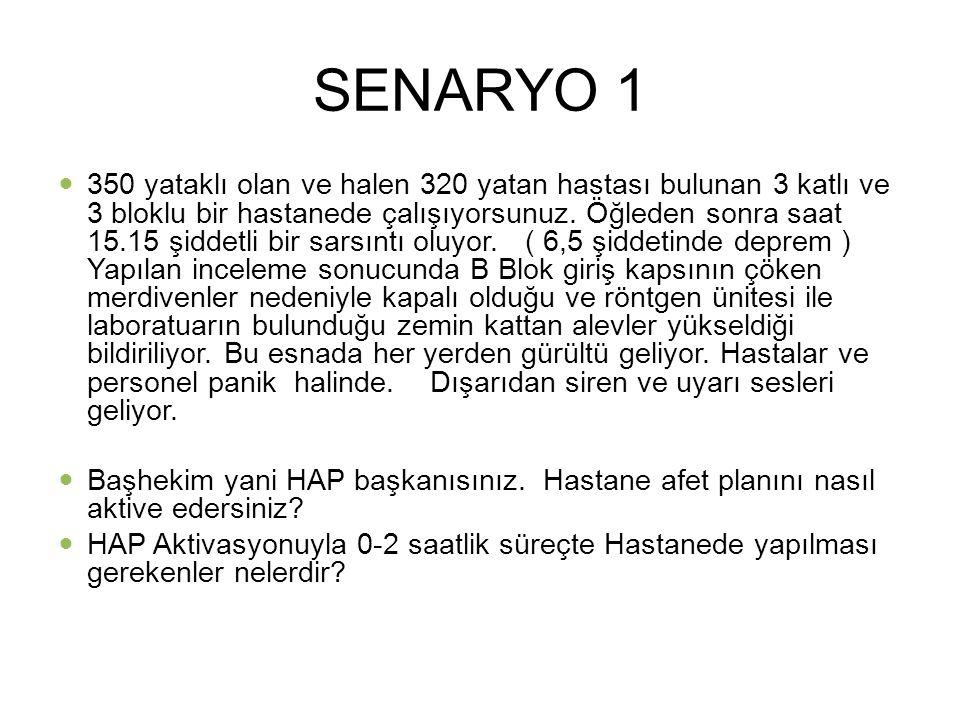 Bursa HAP SENARYO 1.
