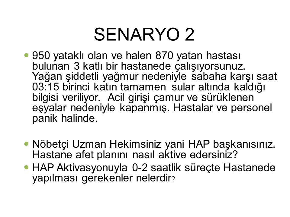 SENARYO 2