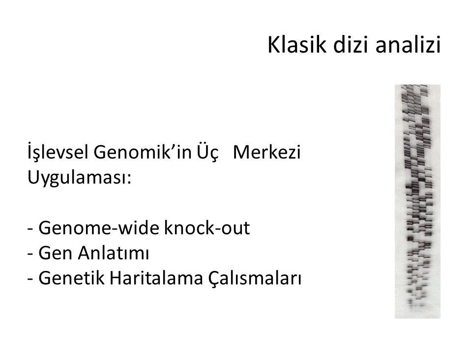 Klasik dizi analizi İşlevsel Genomik'in Üç Merkezi Uygulaması: