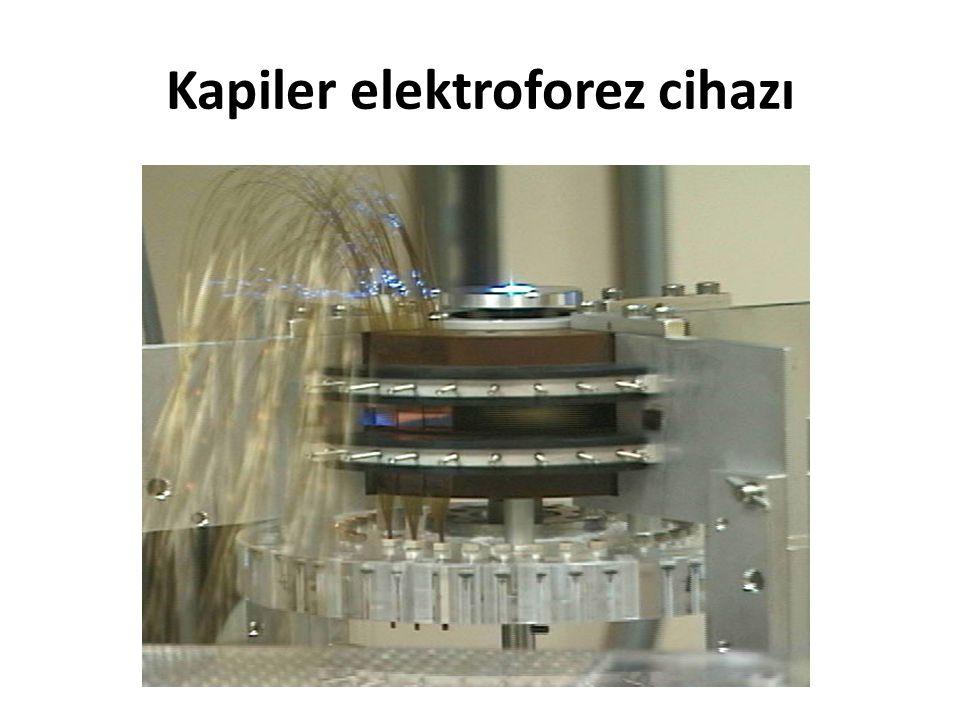 Kapiler elektroforez cihazı