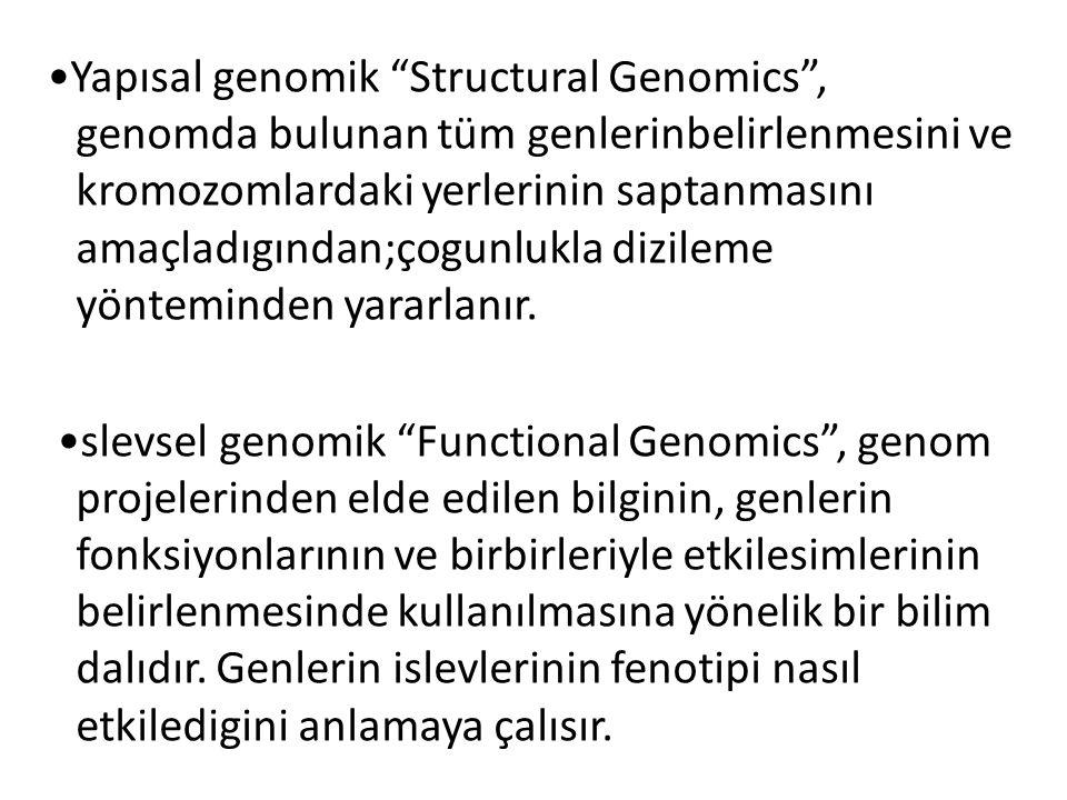 •Yapısal genomik Structural Genomics , genomda bulunan tüm genlerinbelirlenmesini ve kromozomlardaki yerlerinin saptanmasını amaçladıgından;çogunlukla dizileme yönteminden yararlanır.