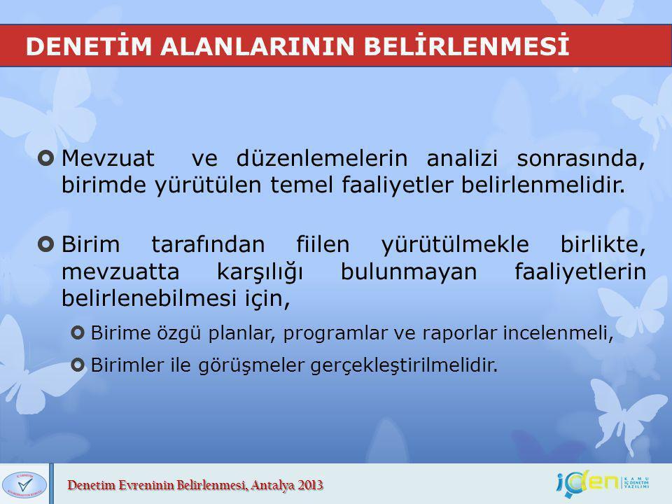 DENETİM ALANLARININ BELİRLENMESİ