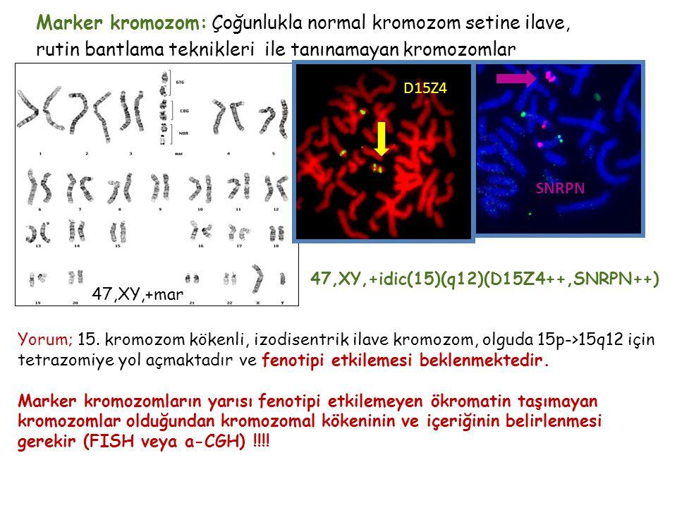 Marker kromozom: Çoğunlukla normal kromozom setine ilave, rutin bantlama teknikleri ile tanınamayan kromozomlar