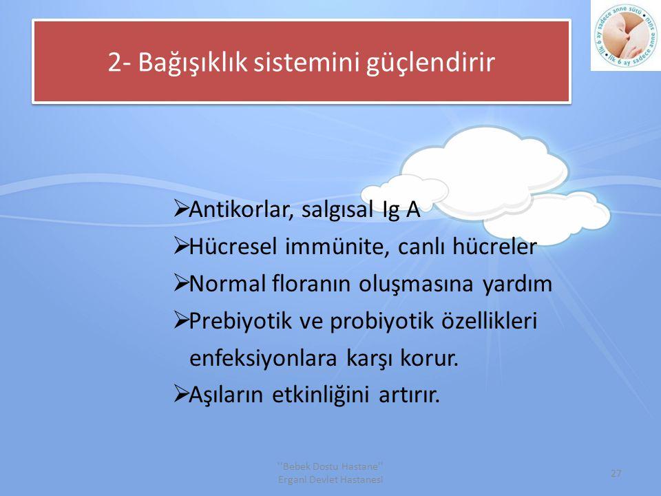 2- Bağışıklık sistemini güçlendirir
