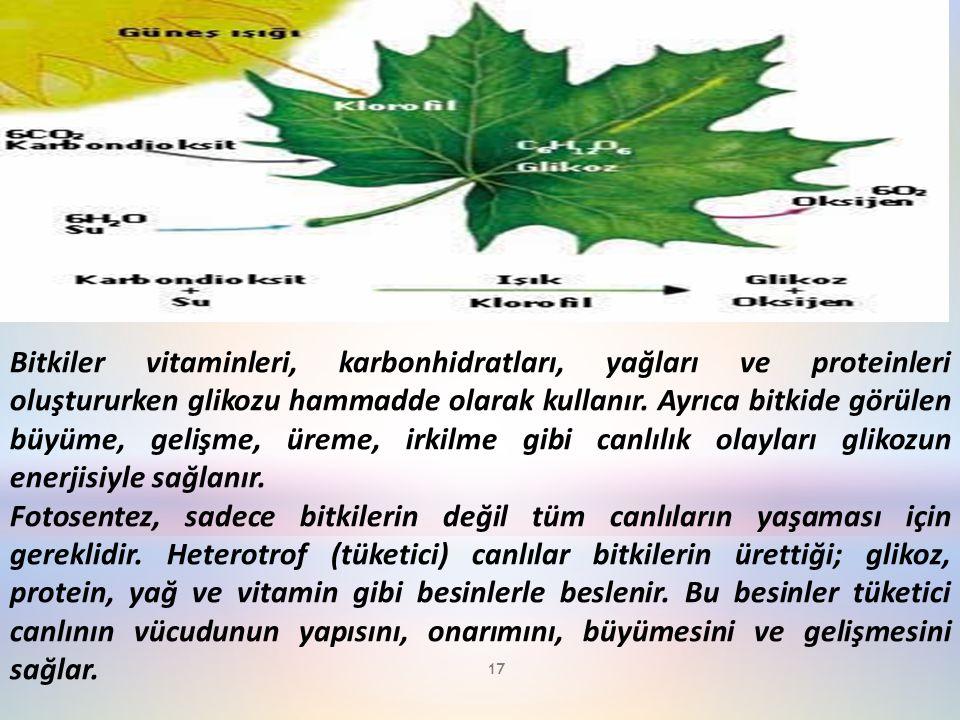 Bitkiler vitaminleri, karbonhidratları, yağları ve proteinleri oluştururken glikozu hammadde olarak kullanır. Ayrıca bitkide görülen büyüme, gelişme, üreme, irkilme gibi canlılık olayları glikozun enerjisiyle sağlanır.