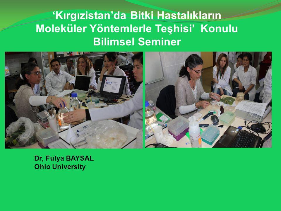 'Kırgızistan'da Bitki Hastalıkların Moleküler Yöntemlerle Teşhisi' Konulu Bilimsel Seminer