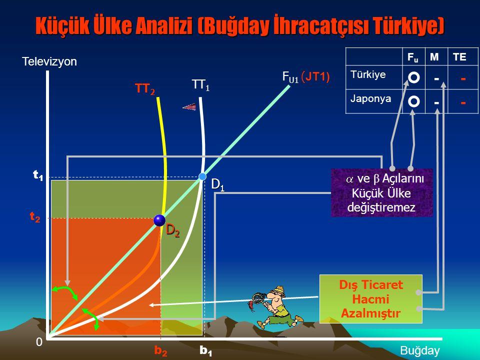 Küçük Ülke Analizi (Buğday İhracatçısı Türkiye)