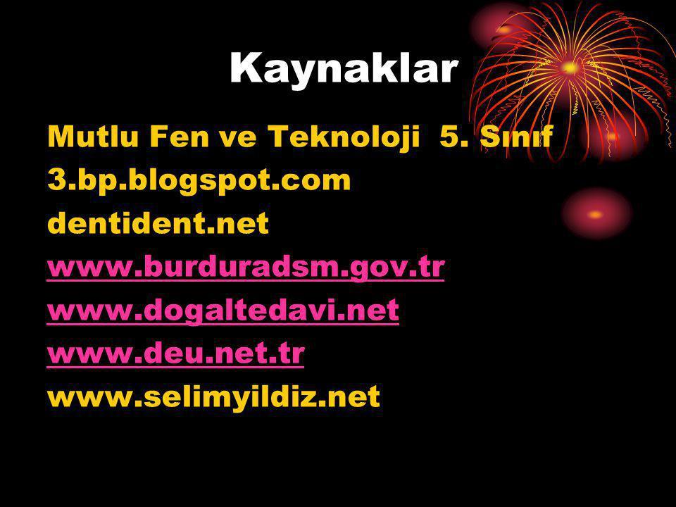 Kaynaklar Mutlu Fen ve Teknoloji 5. Sınıf 3.bp.blogspot.com