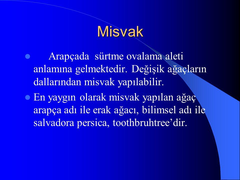 Misvak Arapçada sürtme ovalama aleti anlamına gelmektedir. Değişik ağaçların dallarından misvak yapılabilir.