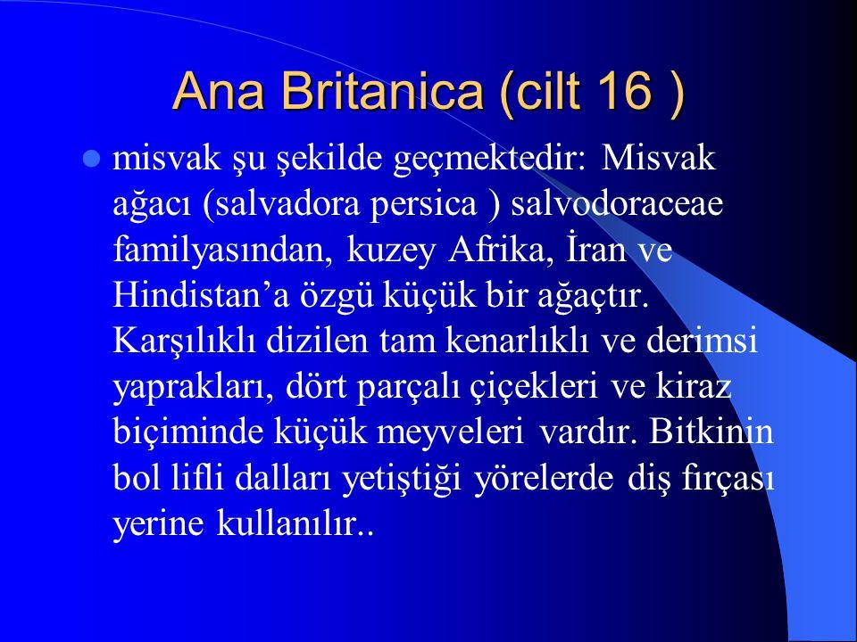 Ana Britanica (cilt 16 )
