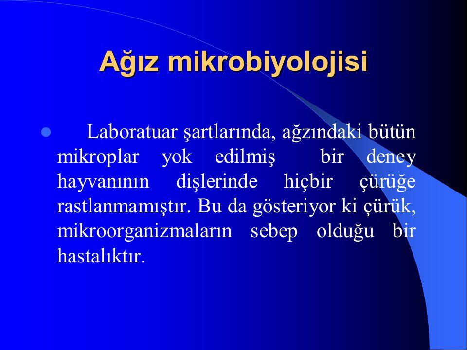 Ağız mikrobiyolojisi