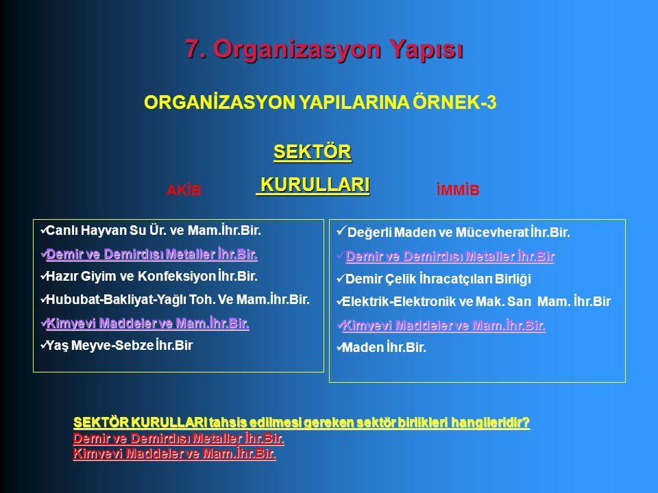 ORGANİZASYON YAPILARINA ÖRNEK-3