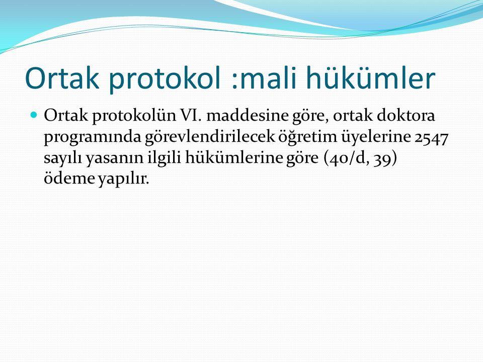 Ortak protokol :mali hükümler