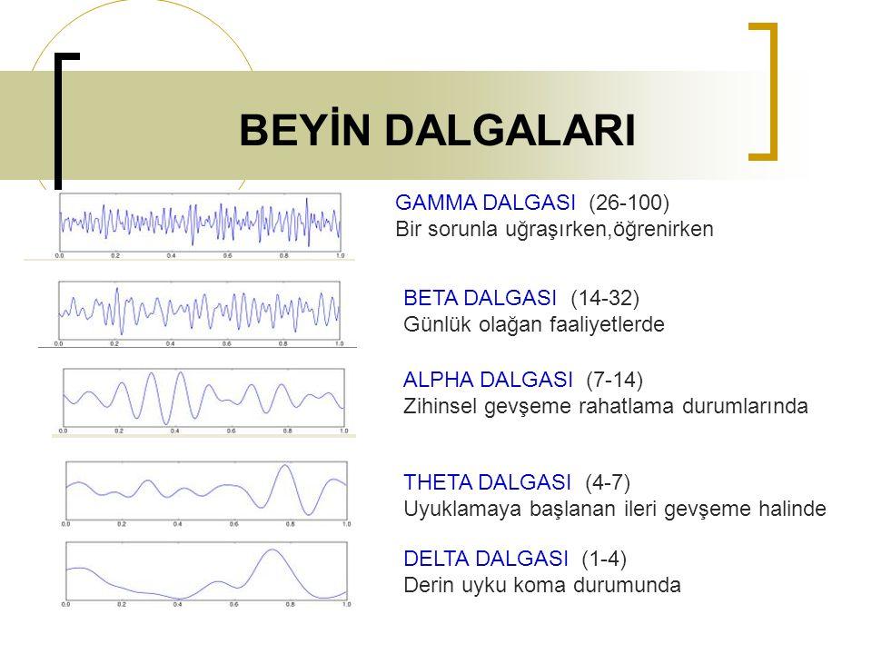 BEYİN DALGALARI GAMMA DALGASI (26-100)