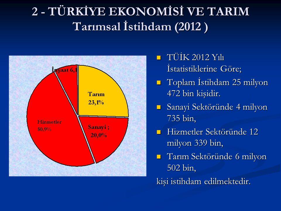 2 - TÜRKİYE EKONOMİSİ VE TARIM Tarımsal İstihdam (2012 )