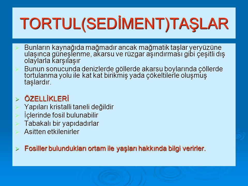 TORTUL(SEDİMENT)TAŞLAR